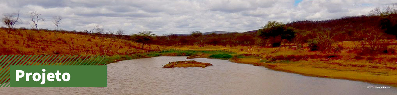 Lago em bioma Caatinga