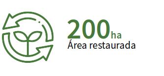 Meta de 200 ha de área restaurada